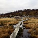 Fitz Roy Nationalpark