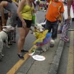 Blumenfest in Medellin