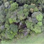 Canopy-Sicht von oben